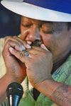 Phil Wiggins on blues harp in concert